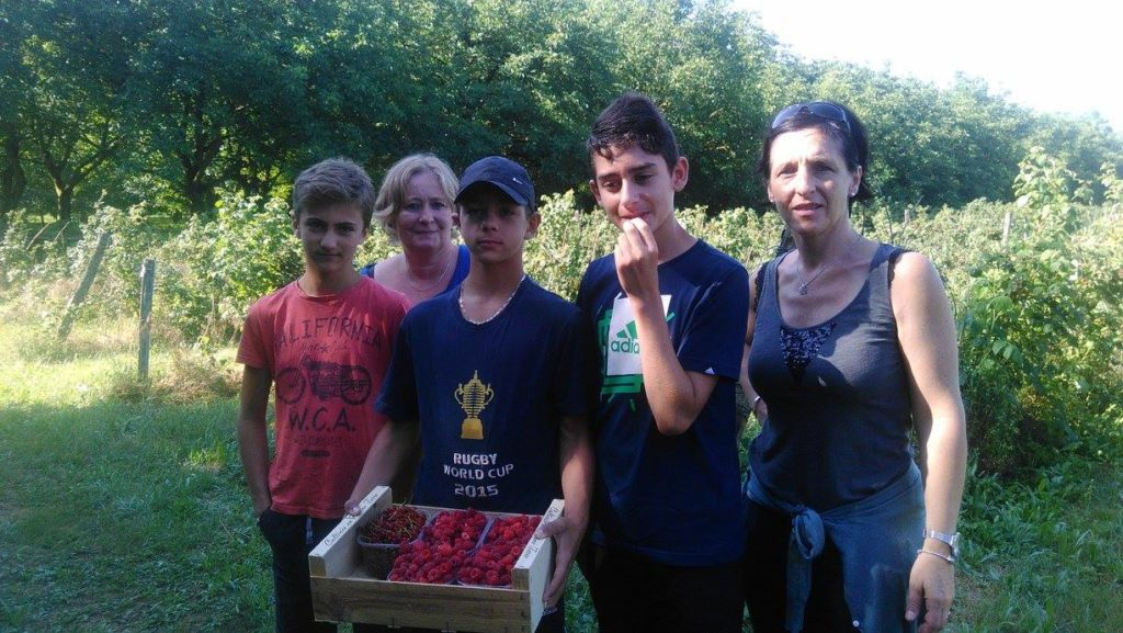lycee-denseignement-agricole-prive-bellevue